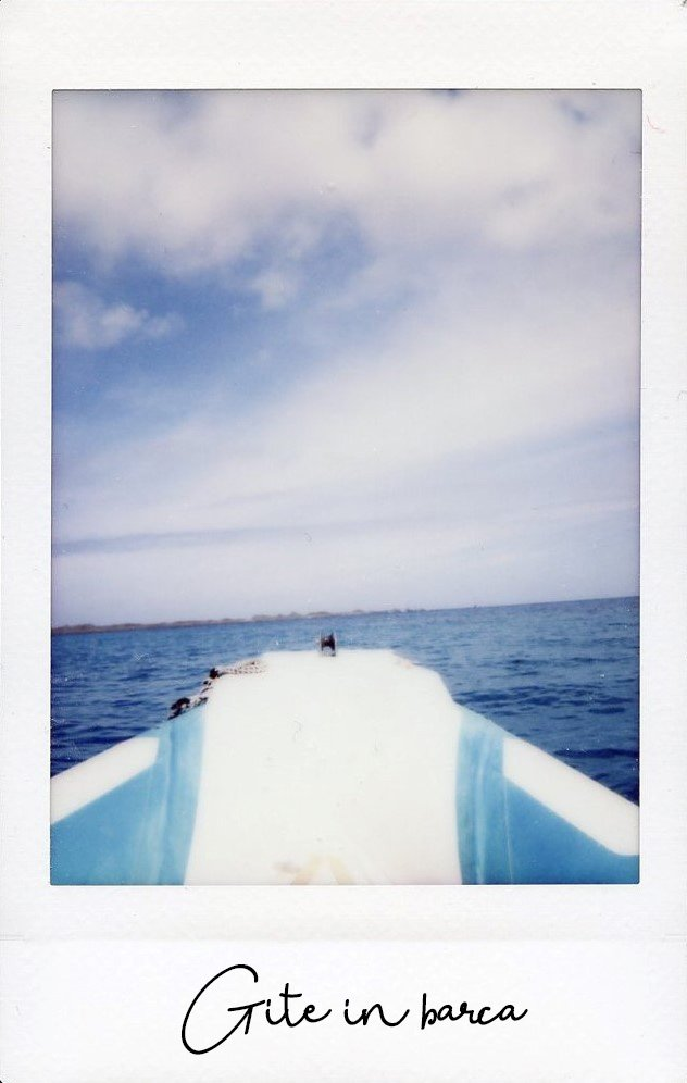 The Space Passenger Instax Barca
