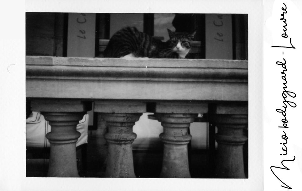 The Space Passenger Instax Gatto Louvre